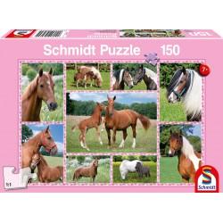 Puzzle Schmidt: Cai fermecători, 150 piese
