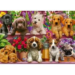Puzzle Schmidt: Câini pe raft, 500 piese